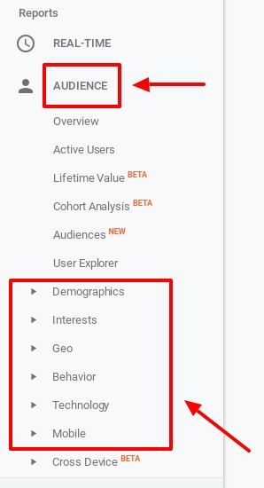 different types of google analytics audience reports