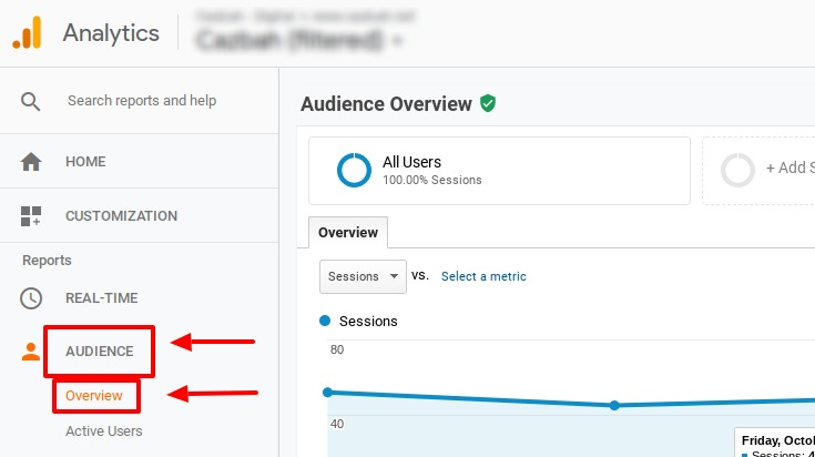 how to use google analytics audience tab