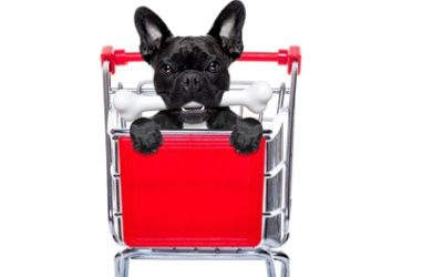 Marketing is for the Dogs – Part 2
