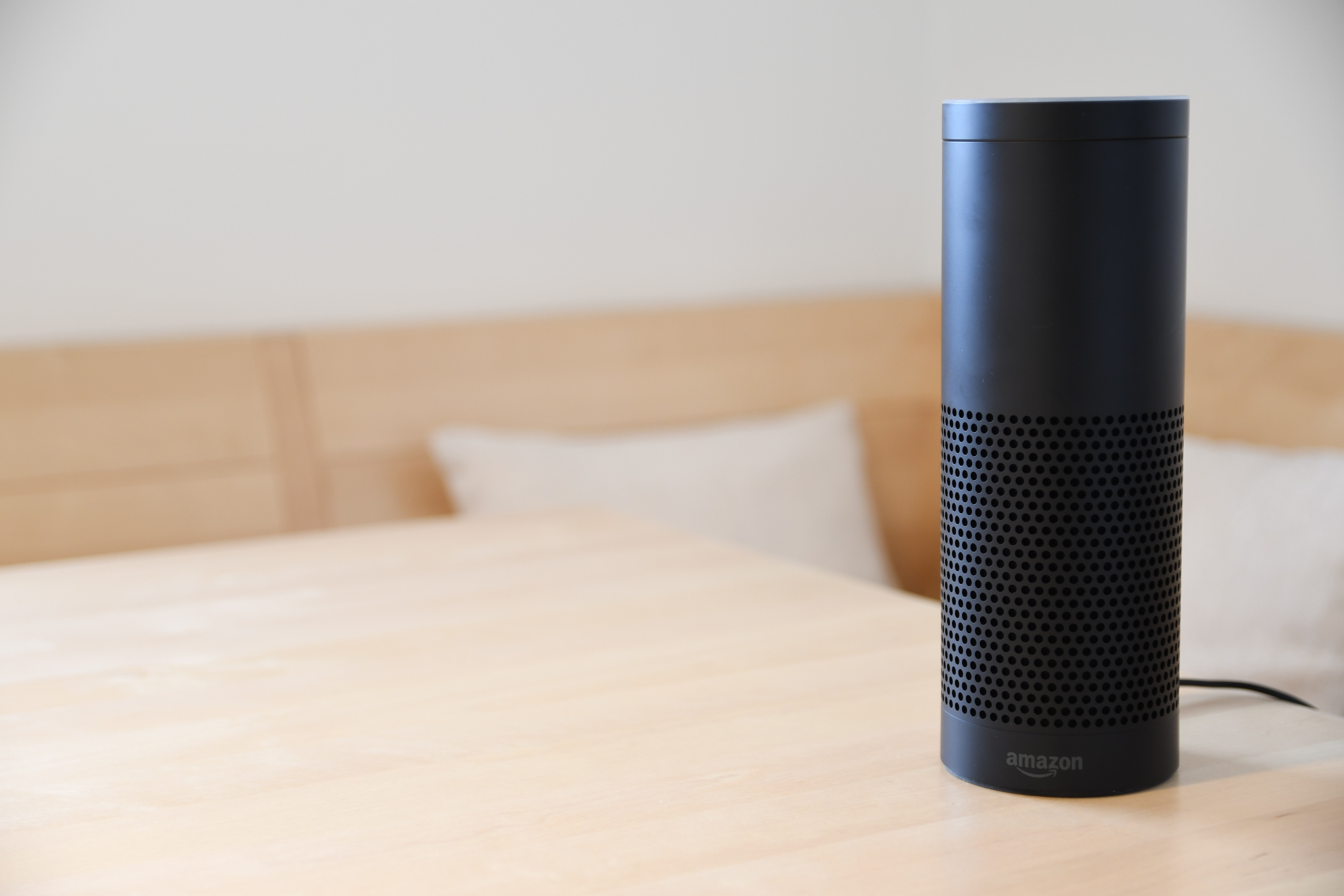 voice search technology device popularity stats