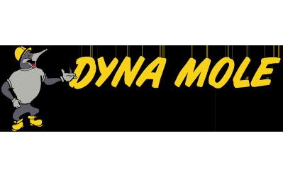 Dynamole-Logo-v5