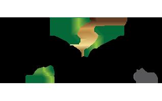 Precision-Eforming-LLC-Logo-72
